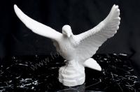 Holub roztažená křídla 19,5x21,5 cm