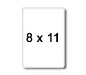 1456755003_8x11.jpg